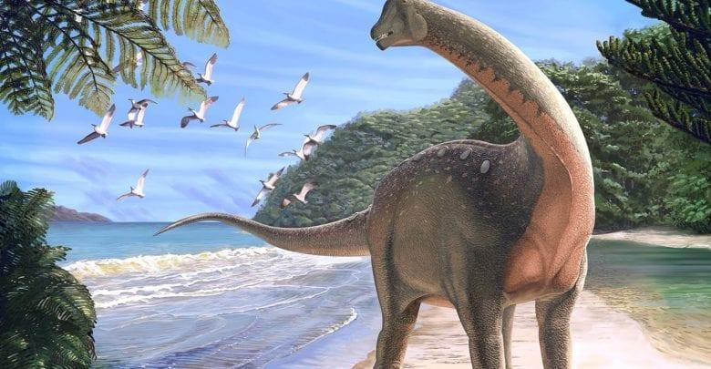 Largest dinosaur to roam Earth 200 MILLION years ago found