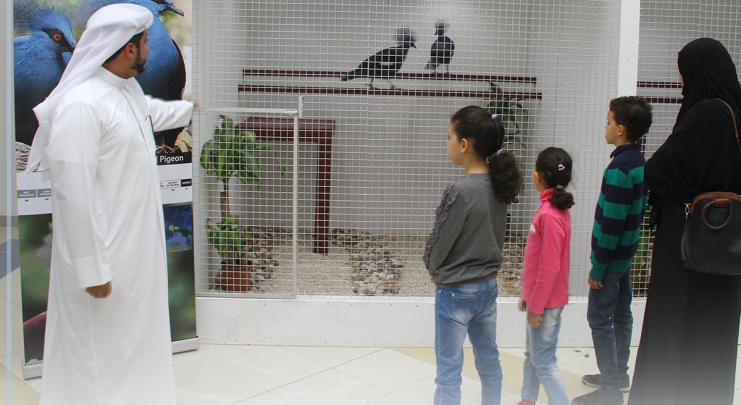Qatar Scientific Club begins registration for spring activities