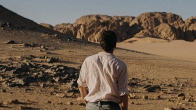 Photo of 15 films slated for Qumra screenings