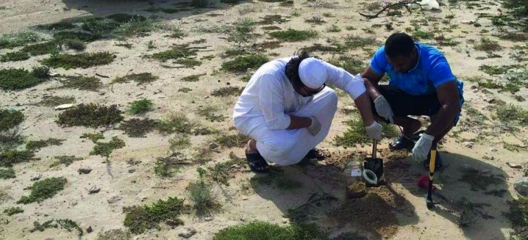 MME launches first phase of soil quality monitoring