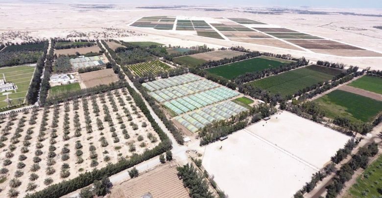 Qatar Airways flights and lounges to use produce from local farms