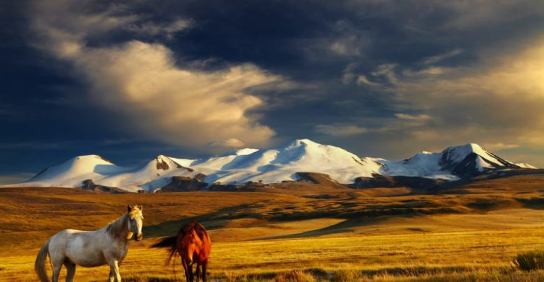 Mongolia grants Qatari citizens visas on arrival