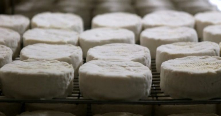 Ministry warns against consuming two types of French cheese