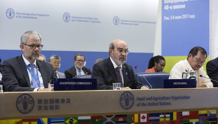 Qatar elected unanimously as Vice-President of FAO General Conference