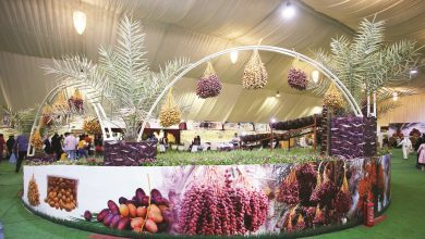 Fresh dates festival at Souq Waqif to showcase over a dozen local varieties