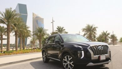 New Hyundai Palisade A perfect family car with a stylish, innovative design