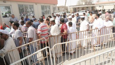 Over 4,000 sheep distributed in first two days of Eid