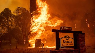 Australia declares state of emergency in two states due to fires