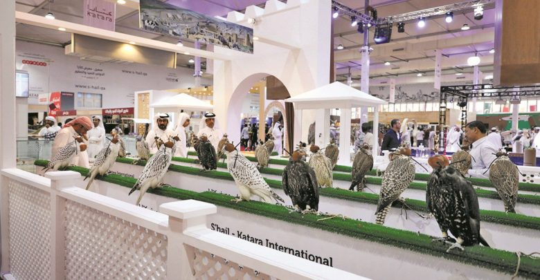 Highly motivated auction at falcons exhibition «Suhail 2019»