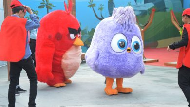 Photo of Ooredoo sponsors Angry Birds World Carnival