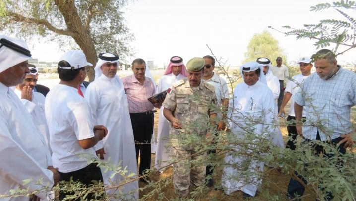 MME launches project to protect endangered tree