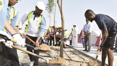 Photo of Ashghal, Aspire students take part in beautification, tree-planting campaign