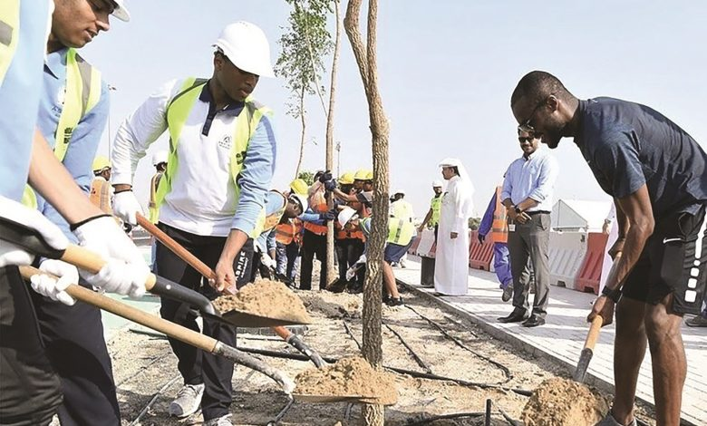 Ashghal, Aspire students take part in beautification, tree-planting campaign