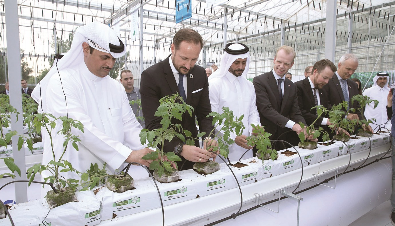 Qatar's first water-saving greenhouse pilot project launched