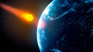 Photo of NASA warns of an asteroid may hit Earth