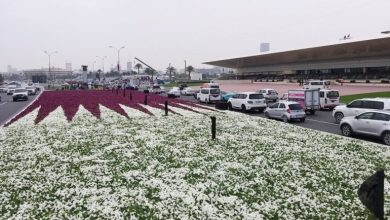 Photo of Qatar flag of flowers decorates the cornice