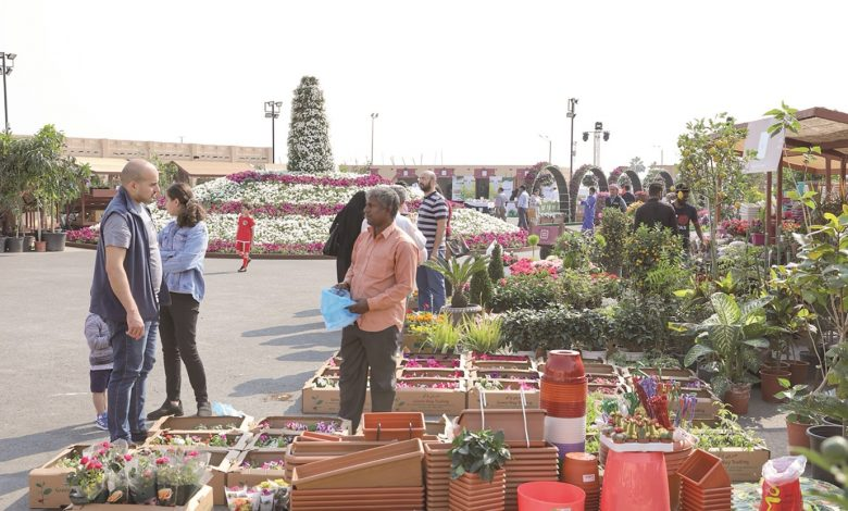 Demand soars for varieties of flowers & ornamental plants at Mahaseel Festival