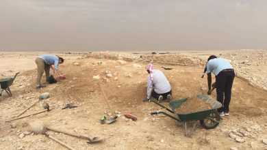 Photo of Qatar Museums, Sidra launch archaeological project
