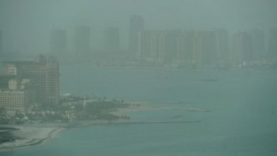 Photo of The winter is slowly gripping Qatar