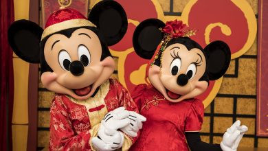 Photo of 2020 Chinese new year: Fashion Collections