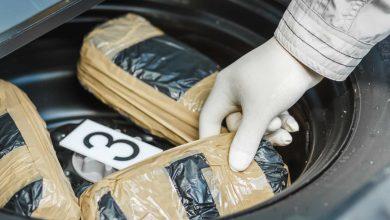 Photo of Qatar Customs foils smuggling of marijuana at Hamad International Airport