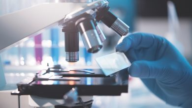 Photo of World Health Organization: COVID-19 vaccine trial begins