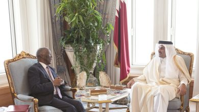 Photo of Amir meets African Union official
