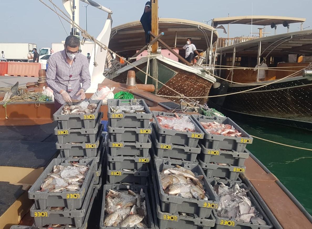 Ministry ensures safe fish trade at ports