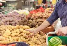 Photo of Winter vegetable markets to reopen today with new timings