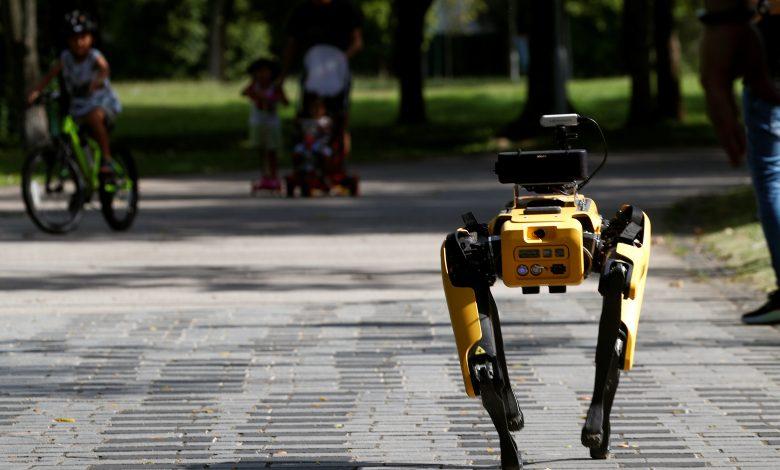 Singapore deploys robot 'dog' to encourage social distancing