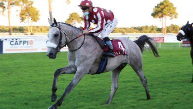 Photo of Sheikh Abdullah's colt extends unbeaten streak at QREC event