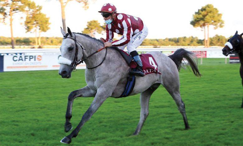 Sheikh Abdullah's colt extends unbeaten streak at QREC event
