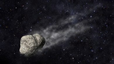 Photo of NASA: Giant asteroid to approach Earth this week