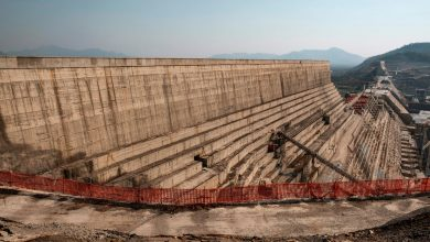 Ethiopia announces success of first stage of filling Renaissance Dam