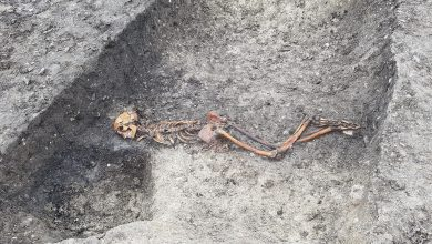 Photo of Iron Age 'mystery' murder victim found in England