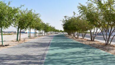 Photo of Ashghal completes beautification works on Al Ennabi Street