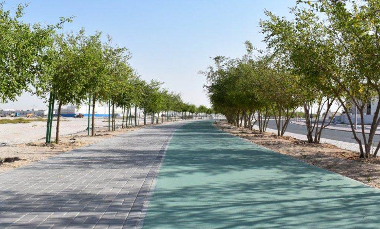 Ashghal completes beautification works on Al Ennabi Street