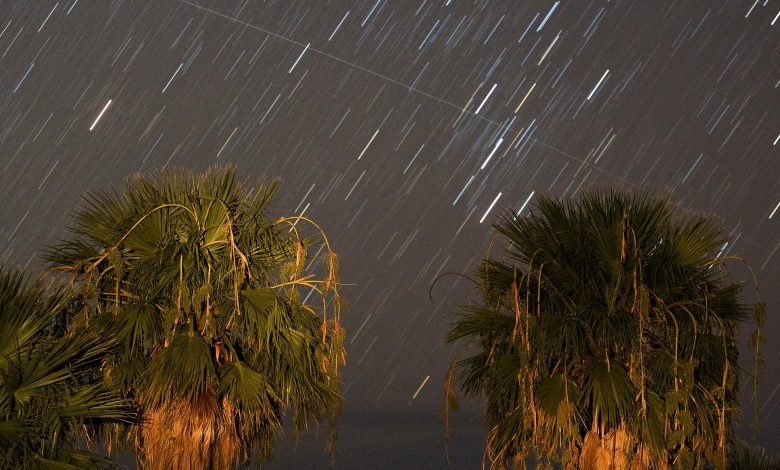 Perseid Meteor Shower shine in the skies of Qatar on Wednesday evening