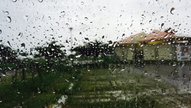 Photo of Good rains in Al-Ruwais and Fuwayrit