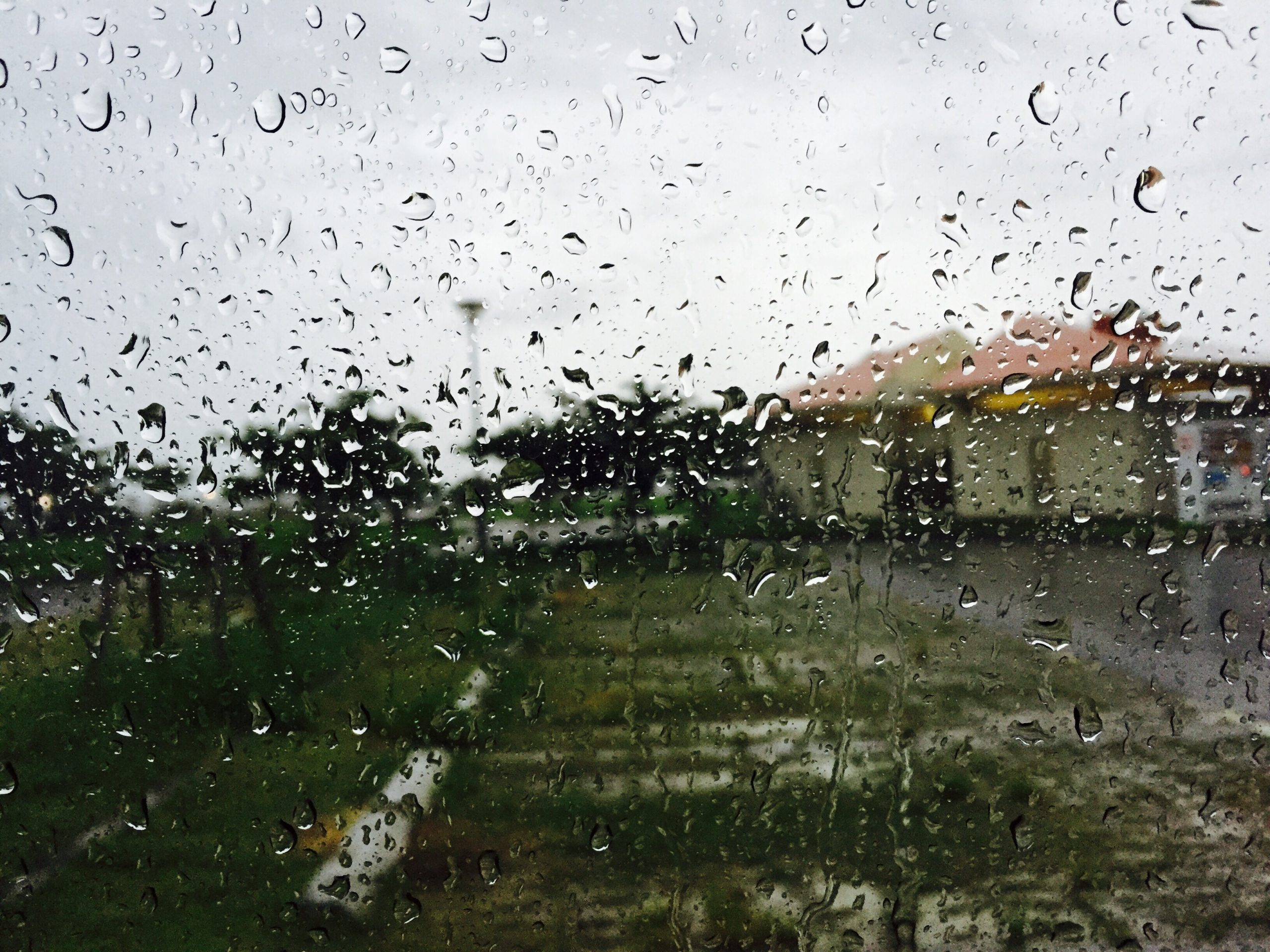 Qatar likely to receive scattered rain from Saturday: QMD