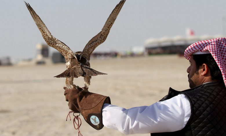 Ministerial Decision Regulates Hunting Season for Certain Birds, Wild Animals
