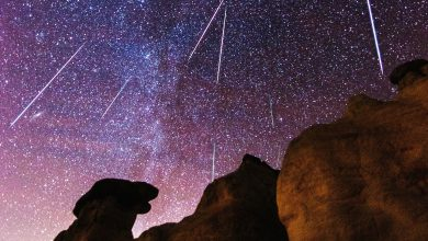 Photo of Orionids Meteor Shower Will Light Up The Sky of Qatar Tomorrow