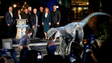 Photo of Jurassic World' sequel production suspended after positive COVID-19 tests