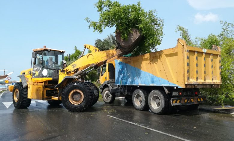 Ministry lifts broken trees after rains