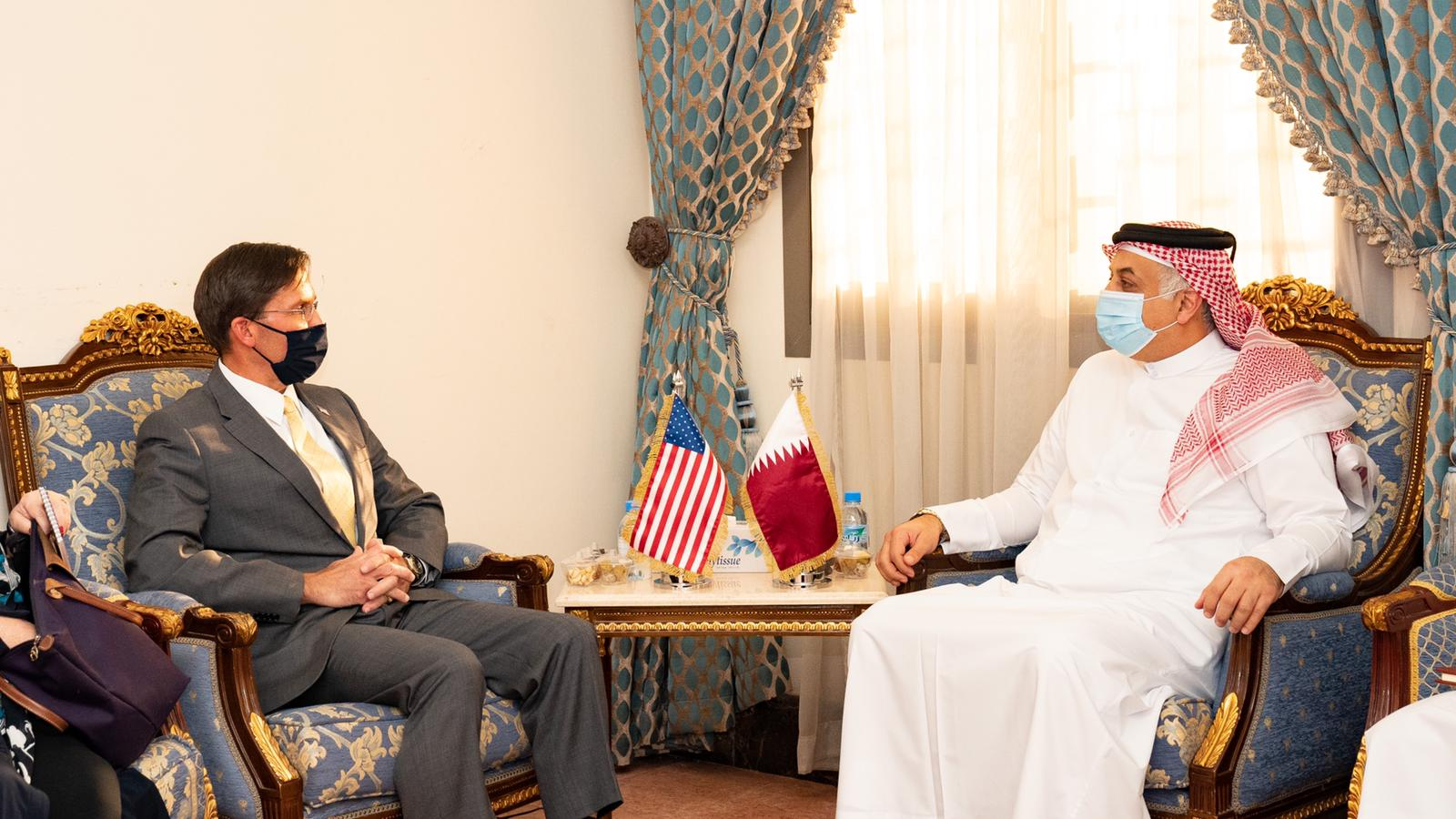 Minister of State for Defense Affairs Meets US Secretary of Defense