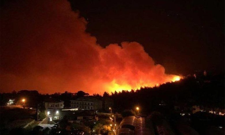 Forest fires hit again in Syria and Lebanon