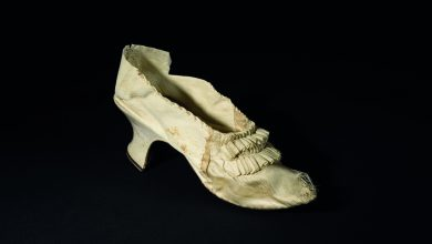 Marie Antoinette's shoe goes up for auction