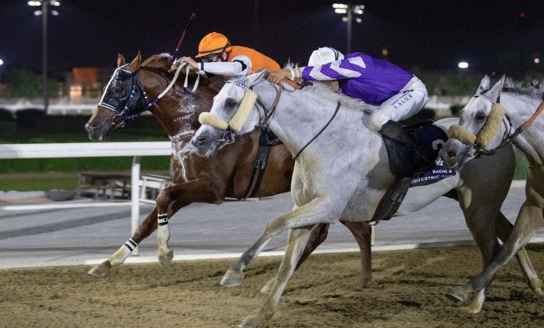 Injaaz Studs LEKHRAIB Sprints to Doha Cup Glory