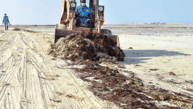 Cleaning 150 km from northwest beaches