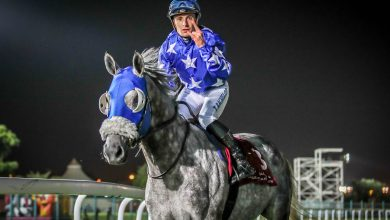 QREC to Organize 21st Race Meeting of HH Sheikh Mohammed Bin Khalifa Al-Thani Trophy